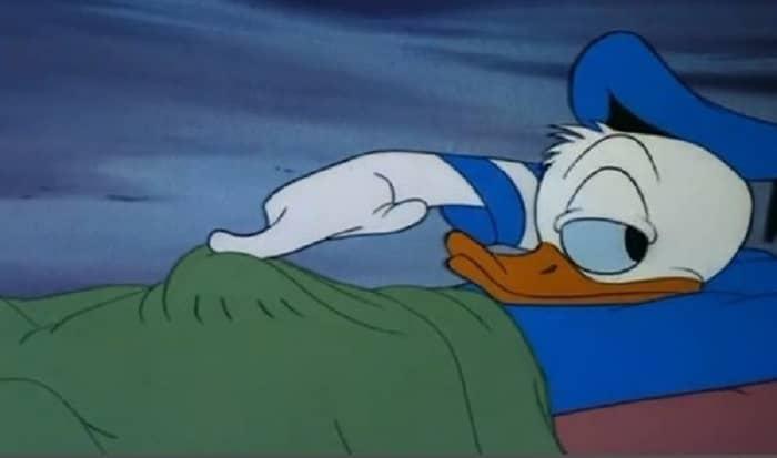 donald duck sleeping meme